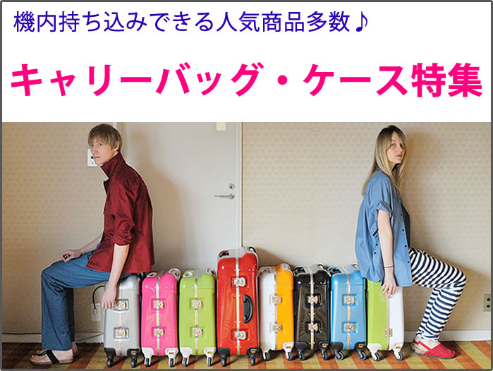 suitcase_currybag